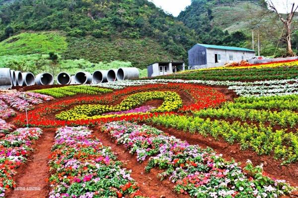 Xây dựng Mộc Châu Happy Land đón khách du lịch dịp Tết Nguyên Đán - PYS Travel